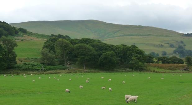 Lake District 074