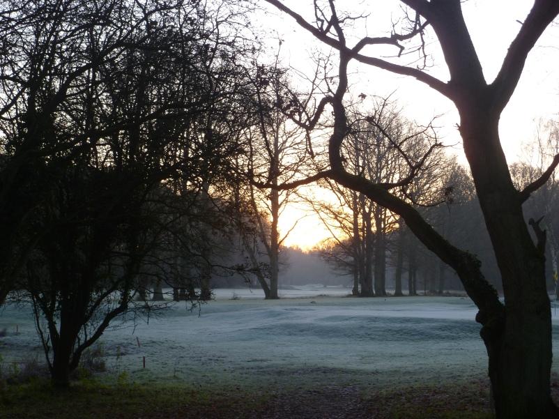 frosty walk 155
