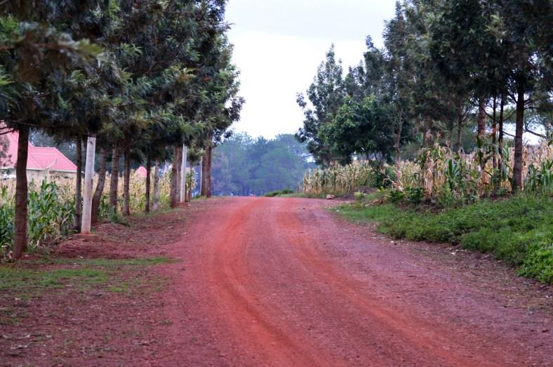 rwanda-275