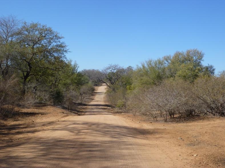 Africa lumix 245.JPG